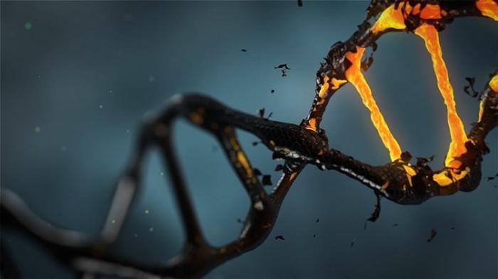 खुद को संपादित करना: जीन और नैतिकता पर
